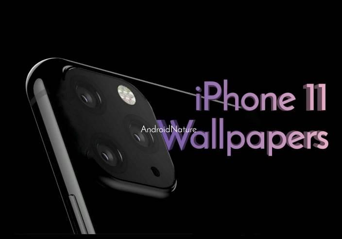 download iPhone 11 (XI) stock wallpaper