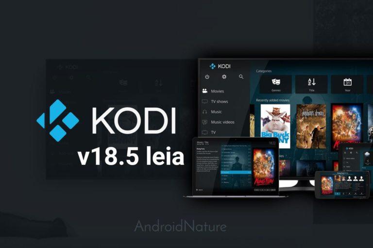 Download Kodi v18.5 leia