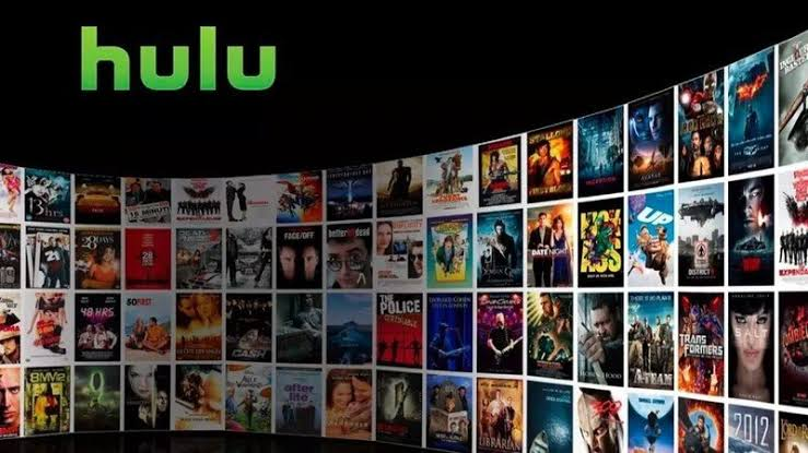 find your Hulu username and password
